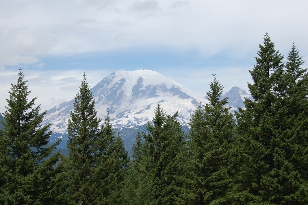 Photos of Mt. Rainier 2008.